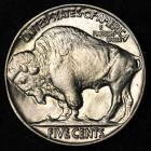 Image of 1937 Buffalo Nickel GEM BU